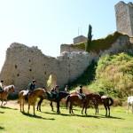 Castello_Romena_horse_2